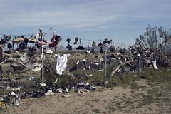 Roadside09 (Alix!) Tags: california abandoned fence highway shoes desert random roadside shoetree highway62 hwy62 ca62 riceshoefence