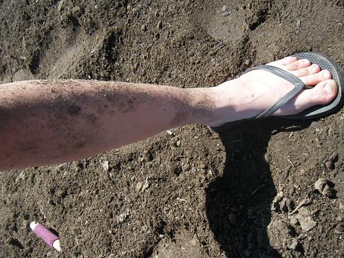 yay dirt