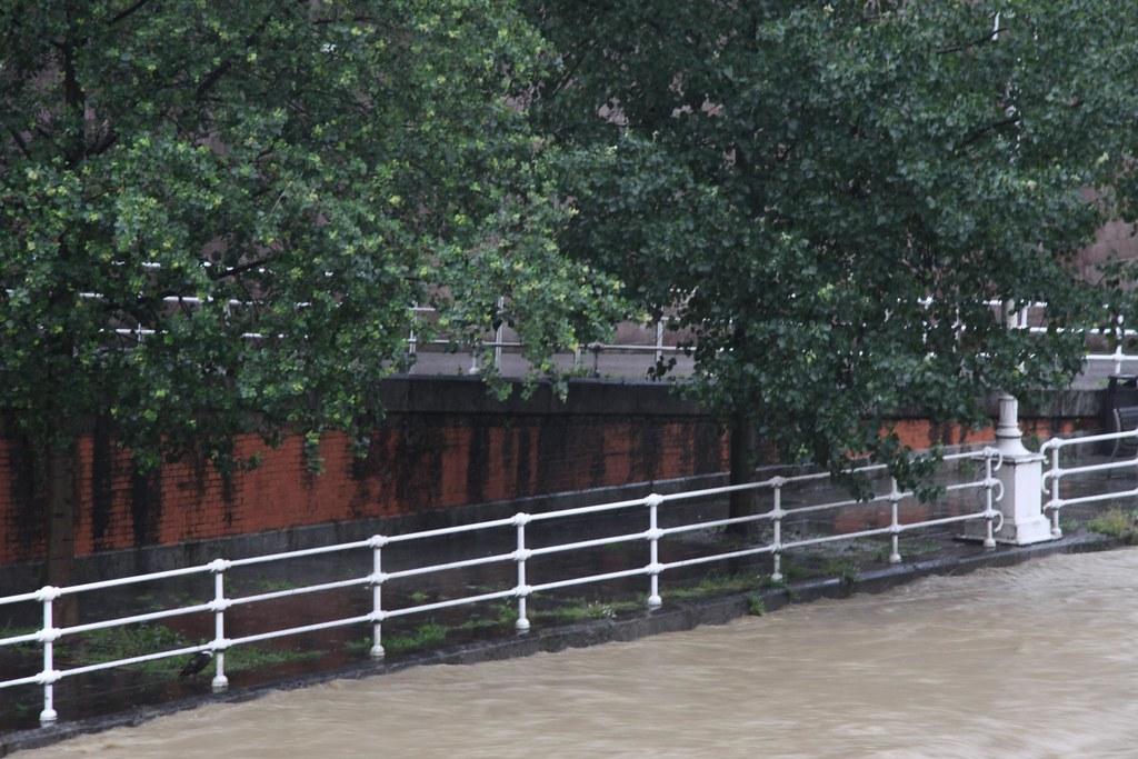 lluvia en junio 2010