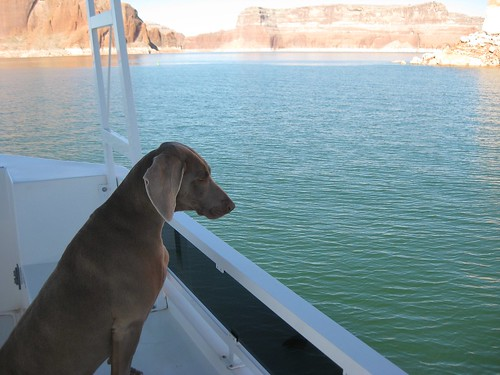Lake Powell 2010 238
