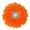 orange_closeup