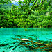 Jiuzhaigou Valley: The Five Flower Lake