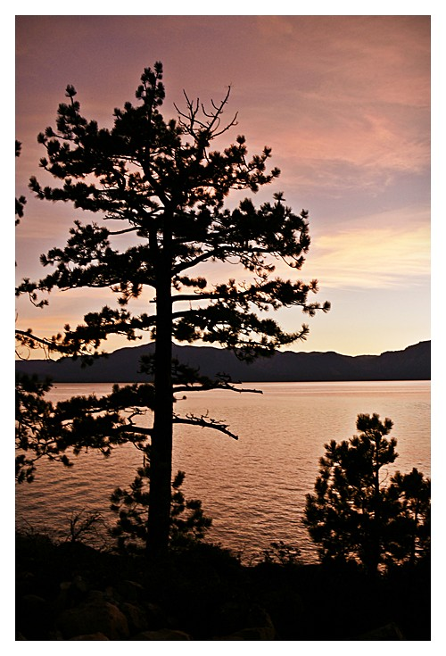 Jessica Jacob Photography - Lake Tahoe Sunset
