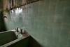 Nature's fighting back (edmundlwk) Tags: old urban abandoned weeds bath singapore decay grunge toilet palace basin tiles bathtub deserted istana tyersallhouse woodneuk canon7d tokina116 tokina1116mm