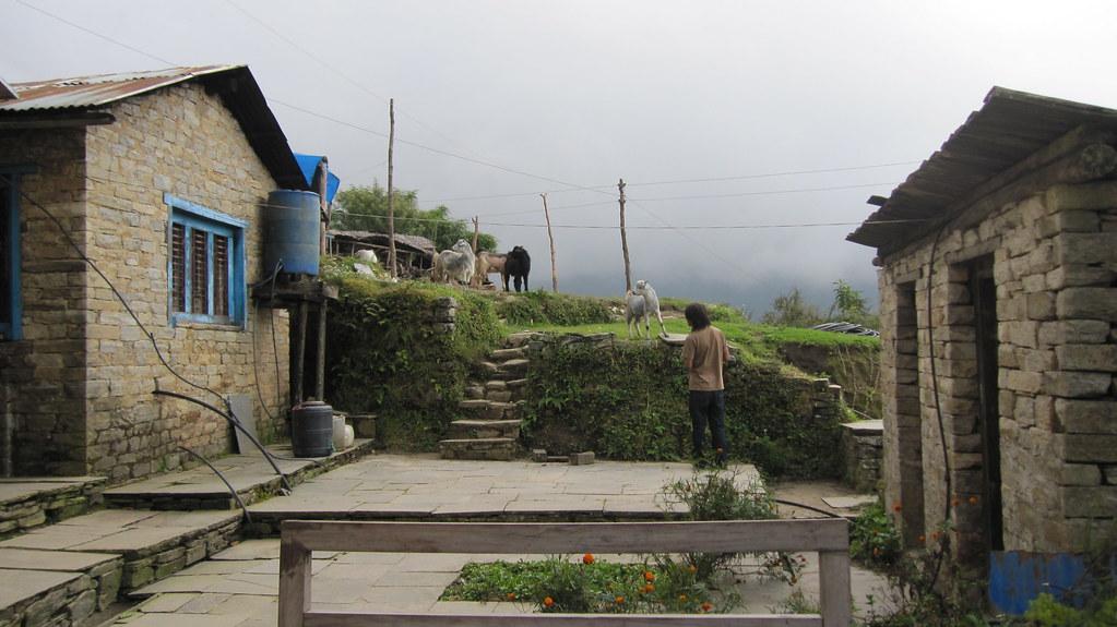 Sete, Sherpa Guide Lodge