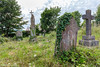 Narberth Graves (PRPhoto dot Wales) Tags: narberth pembrokeshire standrews uk wales brambles churchyard crucifix daisy grass graves gravestones ivy nofilters nothdr outdoors overgrown photograph prphotowales statue tombstones