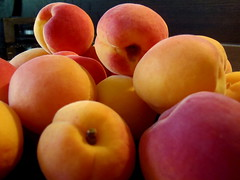 Fruits of summer 005 (jano45) Tags: apricot fruit