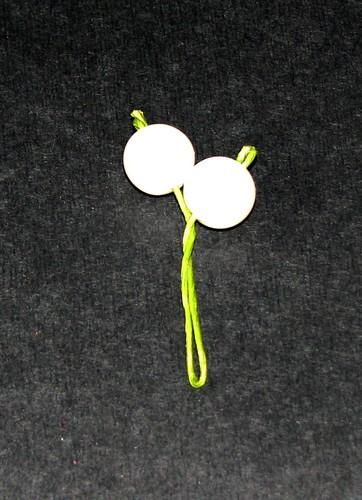Mistletoe 004
