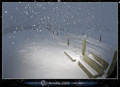 Snowstorm @ Mispeldonk :: Fisheye (Erroba) Tags: winter snow photoshop canon rebel belgium belgique flash snowstorm belgië fisheye tips blizzard erlend cs3 10mm xti strobist 400d mispeldonk erroba 430exii robaye erlendrobaye