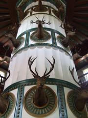 Proof of hunting at the lodge! (EuCAN Community Interest Company) Tags: poland 2009 polandtrip eucan milicz baryczvalley