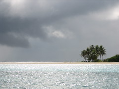 Palm trees, ocean and dark clouds (Dennisworld) Tags: vacation clouds palmtrees frenchpolynesia maupiti motutiapaa