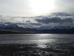 Nov2009 Rockies and windstorm (alisonborealis) Tags: cold train grey nationalpark travels jasper glare alberta rockymountains windstorm mountaincanada therebeastormabrewin