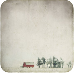 Red Barn (SOMETHiNG MONUMENTAL) Tags: old trees winter snow field canon vintage farm country january indiana worn redbarn 2010 g11 somethingmonumental mandycrandell