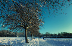 Snowy Leeds 2 (Hadi Al-Sinan Photography) Tags: park blue 2 sky urban snow rural canon high university snowy mark leeds hyde ii resolution 5d bo 2010 hadi 2470mm maek khamees   alsinan