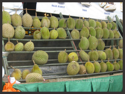 Durians Durians everywhere