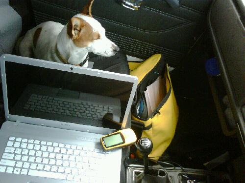 In car navigation