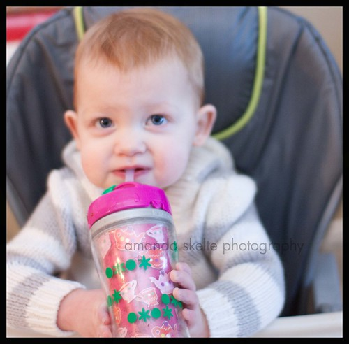 sippy3