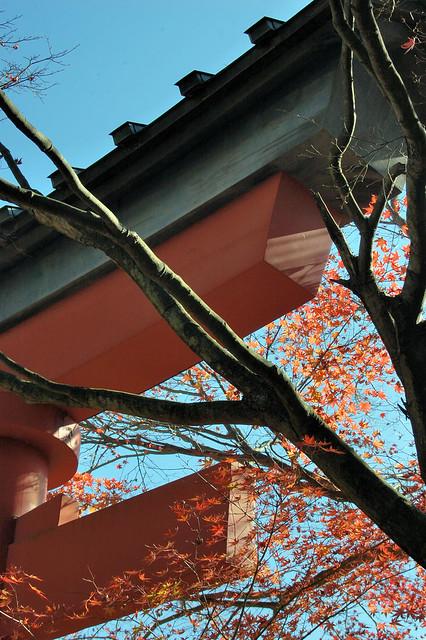 november mountain japan temple japanese tokyo nikon asia buddha buddhist buddhism 日本 nippon 東京 nikkor takaosan torii 2009 nihon kanto hachioji honshu 高尾山 薬王院 yakuoin d40 八王子市