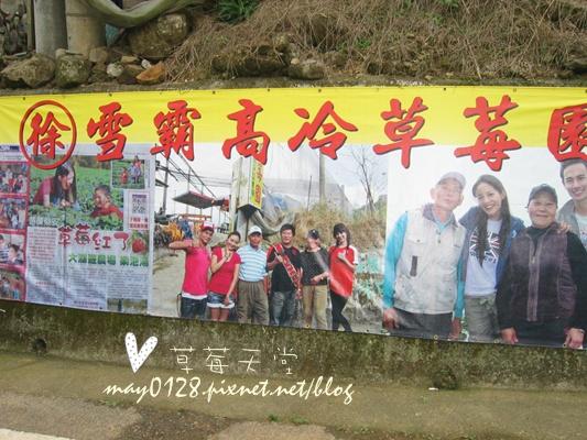 2010.01.02-51泰安雪霸草莓園.JPG