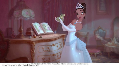 2009_the_princess_and_the_frog_003