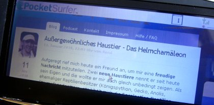Bildschirm PocketSurfer von Hagenuk/Datawind