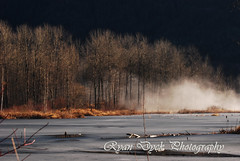 01-16-2010 Mist Take Over (Ryan Dyck) Tags: pink blue red mist mountain canada tree green art ice water birds photoshop wow spectacular creativity photography yahoo google amazing flickr artist photographer bc purple tripod lakes creative january waterfalls pro features bing creeks manfrotto 2010 chilliwack lightroom proaccount d90 slowwater polorizer d80 nikond80 nikond90 ryandyckphotography ryandyckphotographyhometownchilliwack