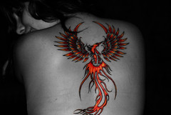 Pheonix in colour (PheonixLee) Tags: colour bird tattoo nude fire back welsh popped pheonix mythical tattooist daiink