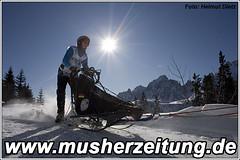 Sylvia-Ulrich, Alpen-Trail Champion 2010 (6-Hunde-Klasse)
