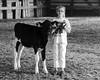 Cow Proud (nosha) Tags: bw usa minnesota barn cow nikon july f56 dairy 4h bovine mn 2009 lightroom stearns 105mm blackmagic 115sec nosha 18200mmf3556 nikond300 115secatf56 stearnscountyfair ul20090809 18augulh