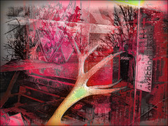 Caribou Window (Tim Noonan) Tags: trees winter canada reflection art window digital photoshop bench cafe heart drawing manipulation pop antlers caribou legacy tqm hypothetical tistheseason tmba artdigital trolled newreality stealingshadows sharingart maxfudge awardtree theperfectpinkdiamond maxfudgeexcellence miasbest maxfudgeawardandexcellencegroup daarklands flickrvault trolledandproud magiktroll exoticimage heavensshots