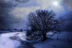 Part 2 ~~~~~wintertime--early evening~~~~ (jmb_germany) Tags: vob impressedbeauty jmbgermany mygearandmebronze mygearandmesilver mygearandmegold mygearandmeplatinum mygearandmediamond peregrino27newvision