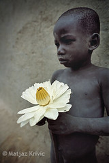 Boy from Djenne, Mali (KrivicMatjaz; www.krivic.com) Tags: africa travel boy portrait people flower film beautiful fantastic nikon village desert young 20mm mali tribe fm2 waterlilly djenne velvia50 matjaz fulan krivic