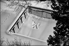 snow angel - saint paul, mn (Dan Anderson (dead camera, RIP)) Tags: winter snow cold pool minnesota angel swimming snowman stpaul snowangel twincities saintpaul mn deepend universityclub angelinsnow