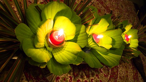 Lighted Waterlilies.....