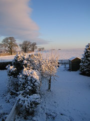 The view from my bedroom (fimack) Tags: home walk winters a
