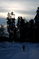 my way (Juhani's_dreams) Tags: sininenhetki bluemoment