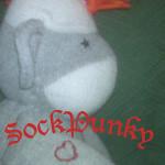 sockpunky
