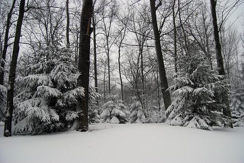 ......Snow