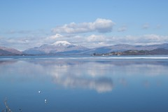 IMG_3639 (Craig Cawkwell Photography) Tags: scotland ben swans lomond lochlomond cameronhouse