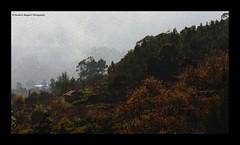 Image as Art (MoodyShotRangan) Tags: blue orange india house green art home canon painting landscape image hill kodai moutain tamilnadu kodaikanal coimbatore mywinners diamondclassphotographer flickrdiamond rubyphotographer 1000d