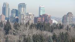 Calgary Downtown Condos