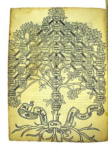 Woodcut diagram from Andreae, Johannes: Super arboribus consanguinitatis, affinitatis et cognationis spiritualis