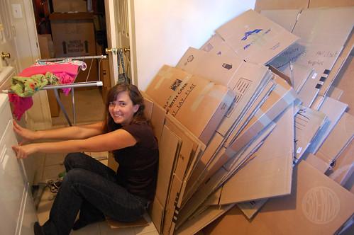 SAJ vs. the cardboard