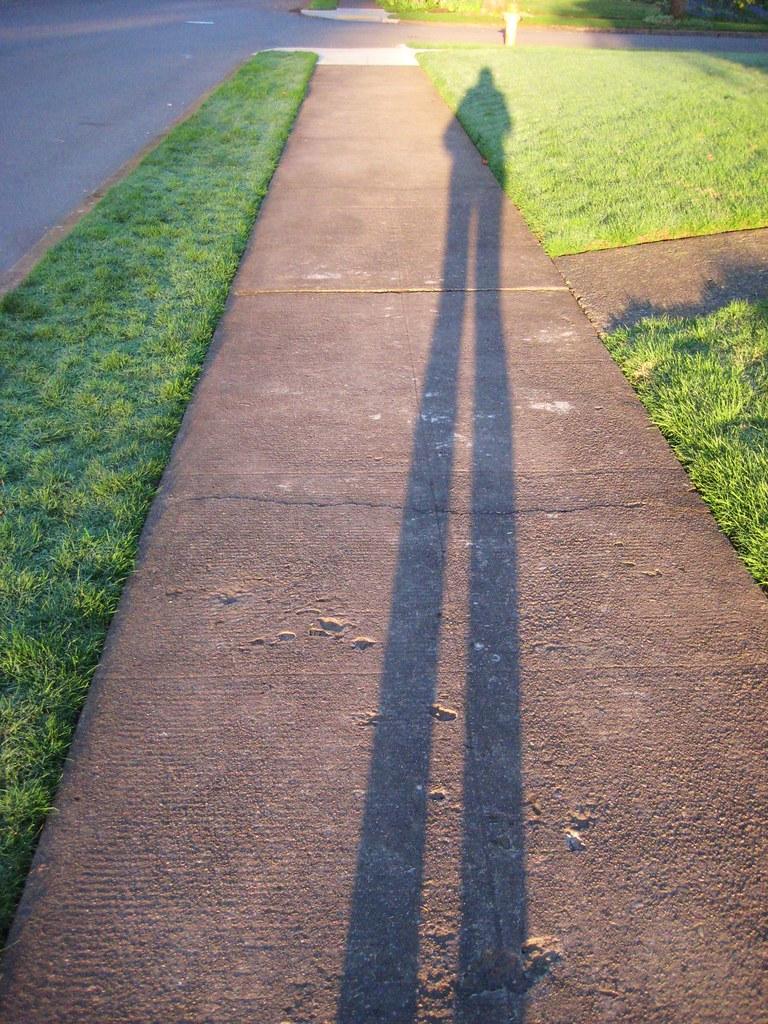 2010-03-18 shadow 001