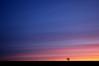 Big Sky, Little Tree (Explore FP) (Chris Beesley) Tags: pink red orange sun yellow sunrise interesting purple cheshire explore 37 fp sigma1020mm explored explorefrontpage explorefp pentaxk100dsuper