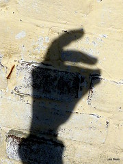 Bunny on the loose (LiesBaas) Tags: shadow photo pix hand pics picture denhaag shade figure thehague easterbunny 2010 handpuppet paashaas schaduwspel kleurenfotografie colourphotographie liesbaas