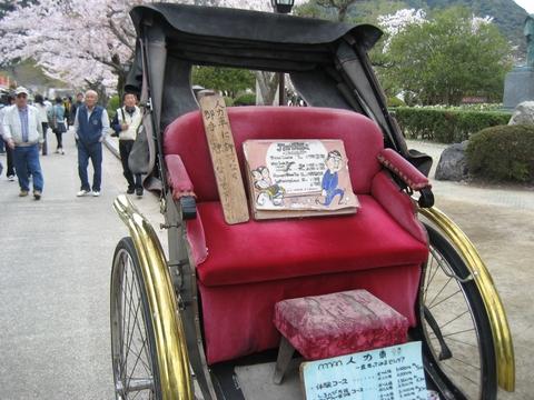 錦帯橋 花見13