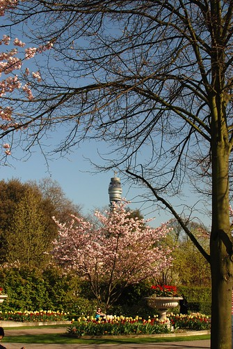 Regent's Park, BT Tower in the background