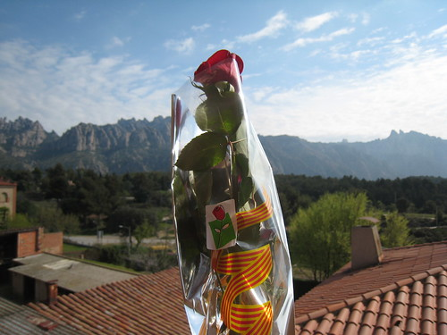 Rose and Montserrat