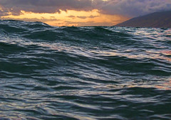 In Dark Water, Kama'ole Beach One, Kihei, Maui, Hawaii (Don Briggs) Tags: ocean sunset waves pacificocean darkwater mauihawaii donbriggs canona640inwaterproofhousing kamaolebeachonemauihawaii